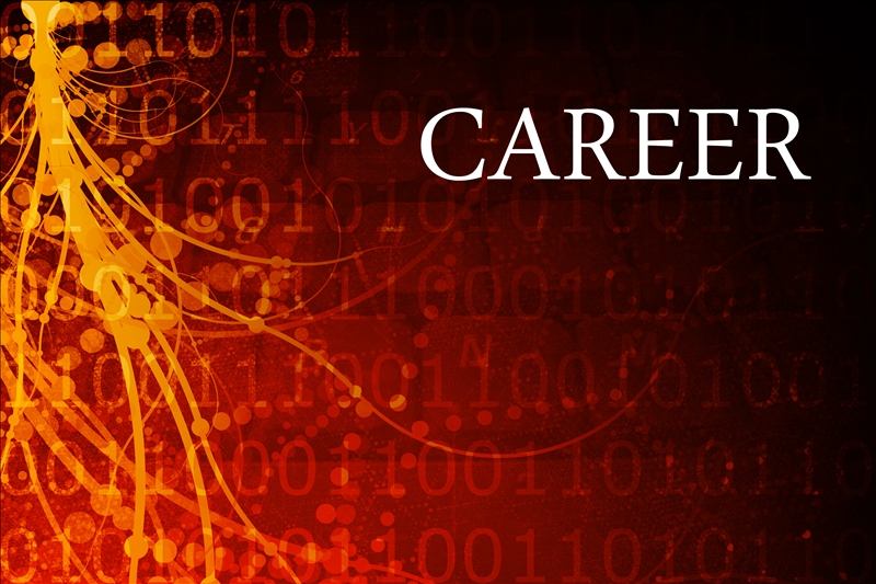 Three Successful Strategies for Career Advancement in Government