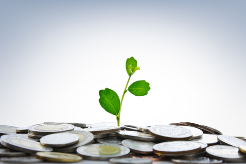 Public-Private Partnerships: A Catalyst for Economic Development?