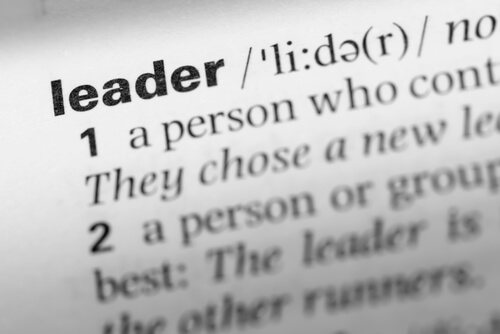 Of Leaders and Teams